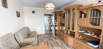 2 pokojowe mieszkanie pod wynajem | blisko umk