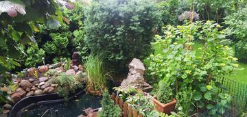Kamienica z ogródkiem